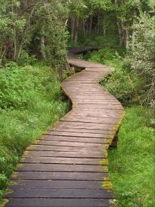 Winding path - good