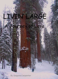 !LIVIN' LARGE - a journey of Love title cover